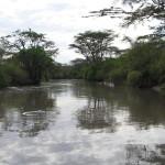W drodze do Ngorongoro.
