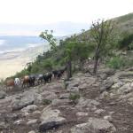 Widok na Ngorongoro.