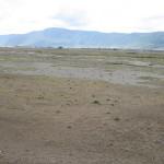 Ngorongoro.