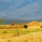 Afrykańska chata w słońcu