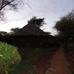 W Lodge Ambosela świta.