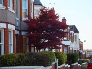 Ulica w Coventry