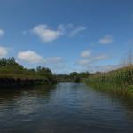 Na Drwęcy chętnie organizowane są spływy kajakowe. Ni dziwnego, bo Drwęca od 1961 roku jest ichtiologicznym rezerwatem przyrody.
