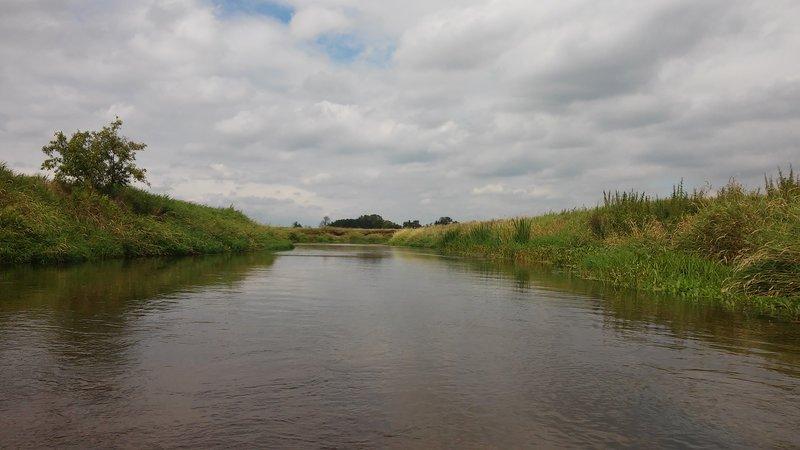 Spływ kajakowy - Liwiec