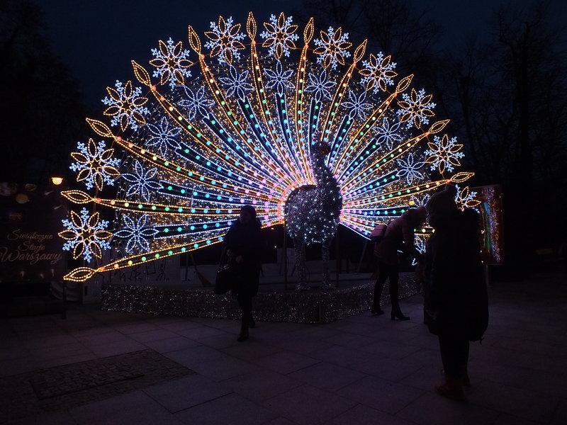 Bożonarodzeniwoy paw w Warszawie