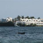 Intrygująca nas na horyzoncie budowla, okazała się hotelem dla bogatych Arabów. Wybrzeże Ocesanu Indyjskiego pod Mombasą