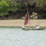 Kolejna łódka mijana w drodze do wioski. Żagiel niekoniecznie musi być uszyty z typowego płótna żaglowego. Pod Mombasą na wodzie