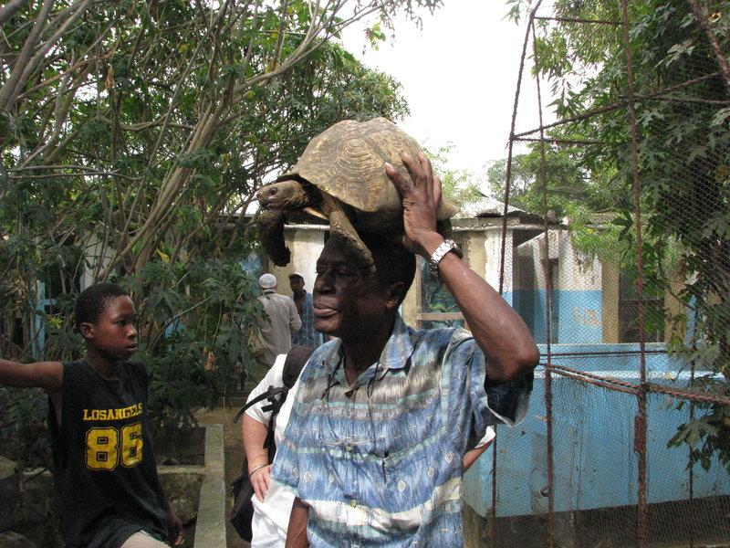 22 Mieszkańcy wioski pod Mombasą własnym sumptem stworzyli w wiosce gadzi i płazi ogród zoologiczny. Dzięki temu, organizatorzy wycieczek, właśnie tu przywożą cudzoziemców. Nas ściągnął tu Cziko.