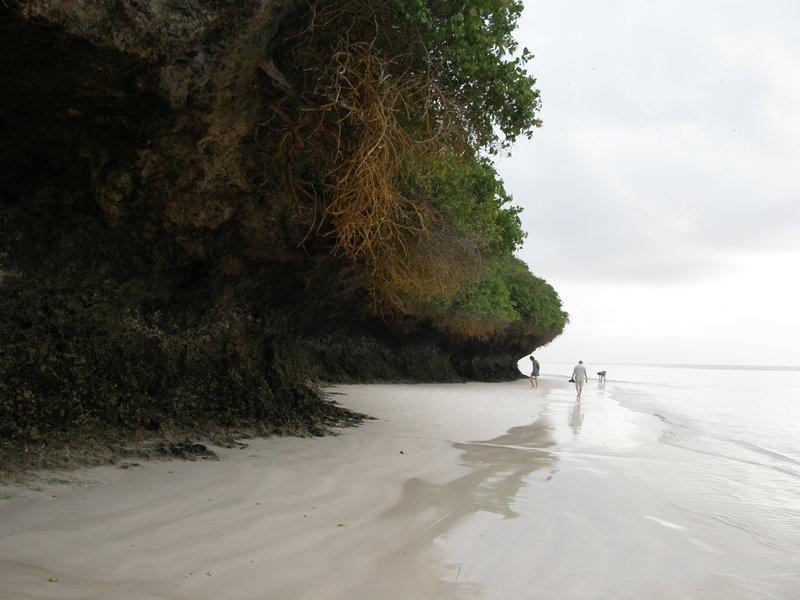 Ocean Indyjski pod Mombasą. Zbieraliśmy się o godzinie szóstej rano przy schodkach. Po porannym pływaniu w oceanie, szliśmy na spacer. Do śniadania, które jedliśmy między ósmą a dziewiątą, było dużo czasu.