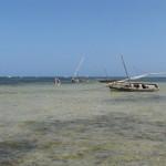 Kąpiel w Oceanie Indyjskim podczas odpływu. Śpiochy, żeby popływać musiały odejść daleko od brzegu. A potem wrócić