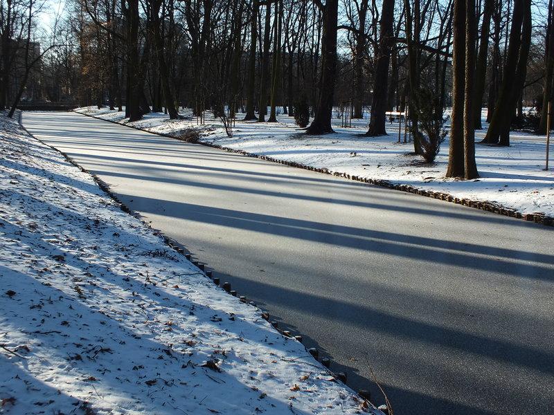 Kaczy kanał skuł lód. Szósty stycznia 2017.Minus dwanaście stopni Celsjusza zatrzymało ludzi w warszawskich domach. A w Łazienkach Królewskich słońce, nie zmącony błękit nieba i cisza. Na gałęzi siedział kwiczoł, a pod innym drzewem przycupnął biegacz. Zimowa sjesta.
