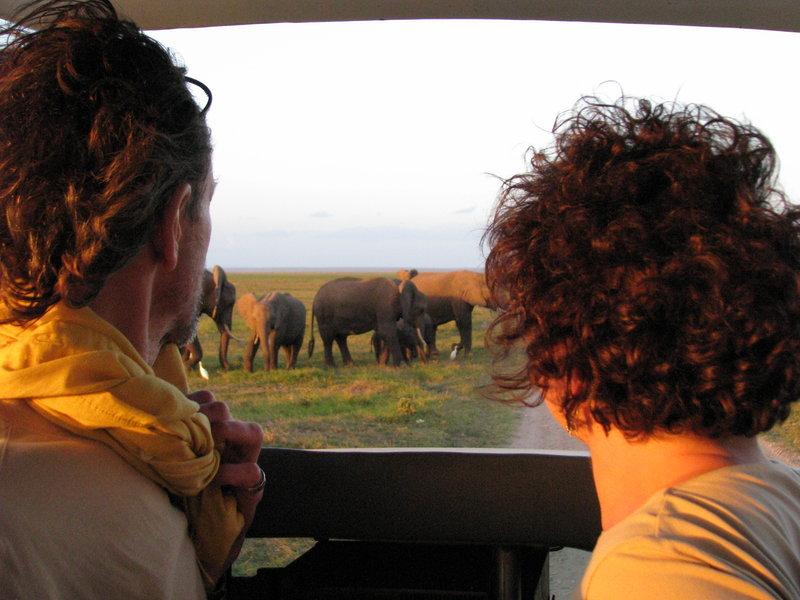 Słonie w Kenii 2009. Wycieczka bezrobotnego