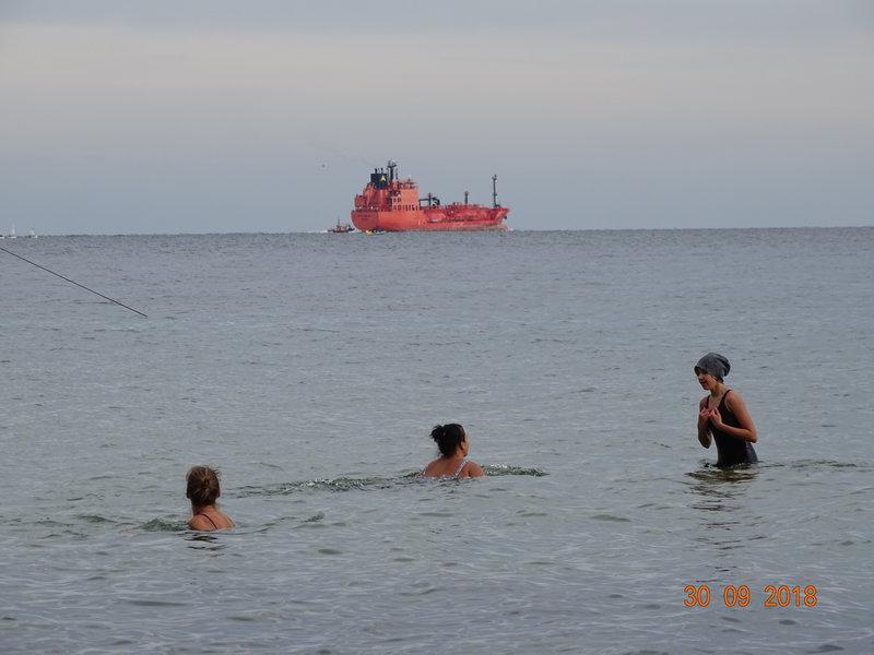 12 stopni Celsjusza, a w Bałtyku, w Gdyni kąpia sie ludzie. Przygotowują się do sezonu zimowego. To morsy.